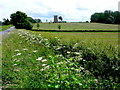 SU0499 : Siddington Round Tower by Nigel Mykura