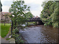 SE3170 : River Skell, Bondgate Bridge by David Dixon