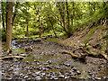 SJ9581 : Poynton Brook, Deer Clough by David Dixon