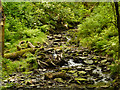 SJ9581 : Poynton Brook, Greenclose by David Dixon