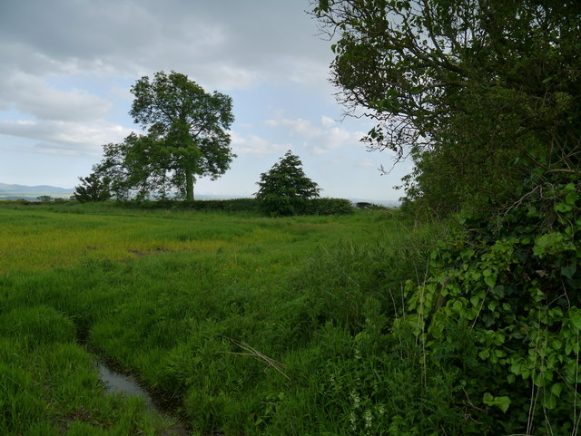 The Site Of Thirlington