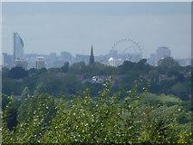 TQ1985 : Wembley: Stadium arch through the London Eye by Chris Downer