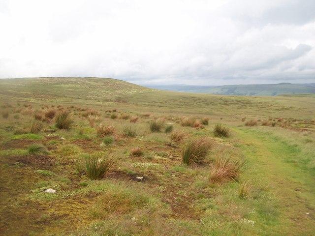 Footpath Crossing Abney Moor