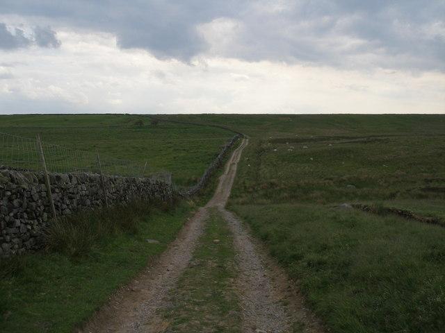 Track at Delves Beck on Middleton Moor