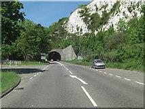 TQ4210 : A26 Cuilfail Tunnel mouth by Stuart Logan