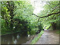 TQ5264 : Footpath to Lullingstone Park Visitor Centre by PAUL FARMER