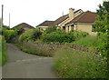 ST5854 : 2012 : Eastern end of Back Lane near Greendown by Maurice Pullin