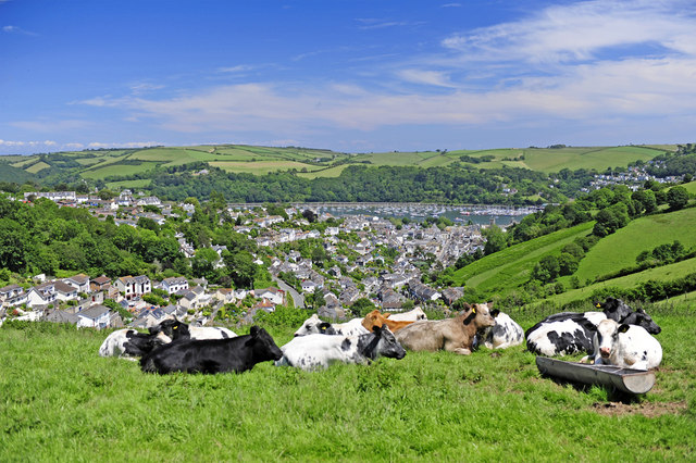 View of Dartmouth from Yorke Road (A379)