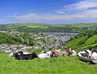 SX8650 : View of Dartmouth from Yorke Road (A379) by Peter Tarleton