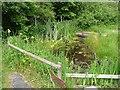 TG0440 : Wildlife pond by Oliver Dixon