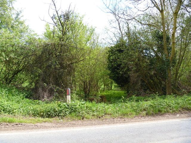 Mill Lane [4]