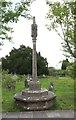 TQ8140 : St Mary, Frittenden - Memorial cross by John Salmon