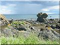 NO5101 : By the Fife Coastal Path by Anne Burgess