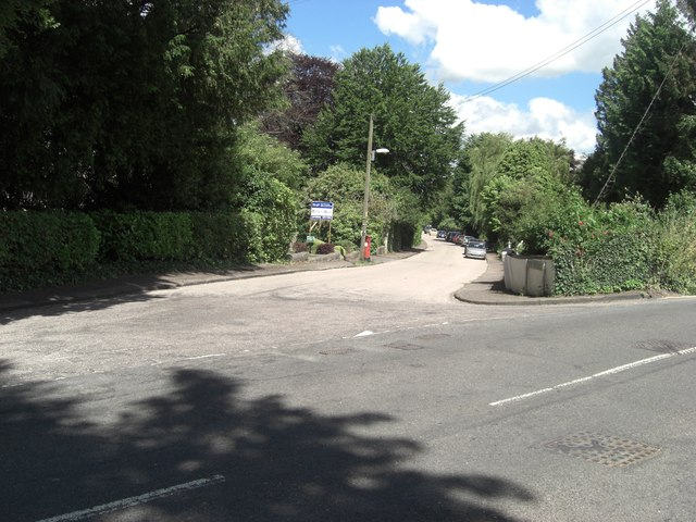 The Ave Road