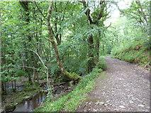SX7489 : Bridle path to Fingle Bridge by John Reeves