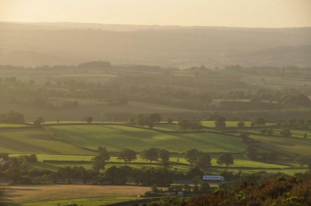 Mid Devon : Countryside Landscape