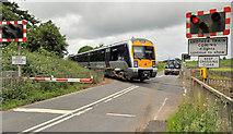 J1461 : Drumbane level crossing near Moira (2) by Albert Bridge