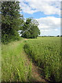 SP7239 : Path to Wicken by Philip Jeffrey