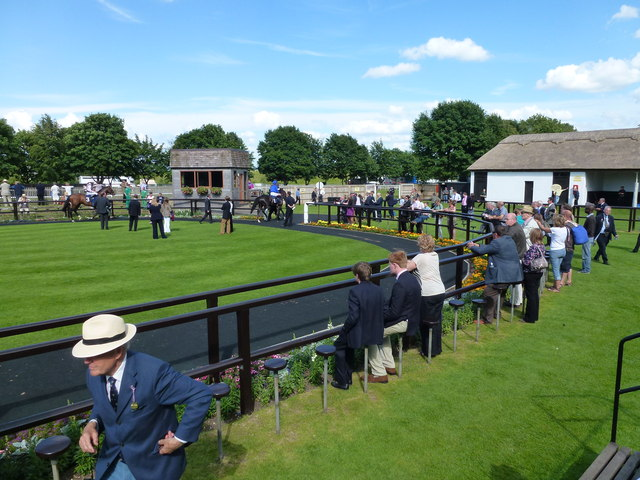 The July Course, Newmarket - Horses leaving the parade ring