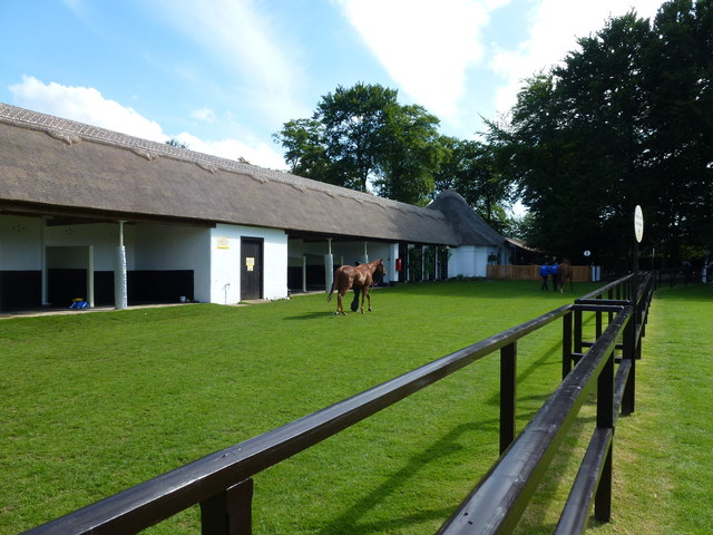 The July Course Newmarket - The saddling boxes