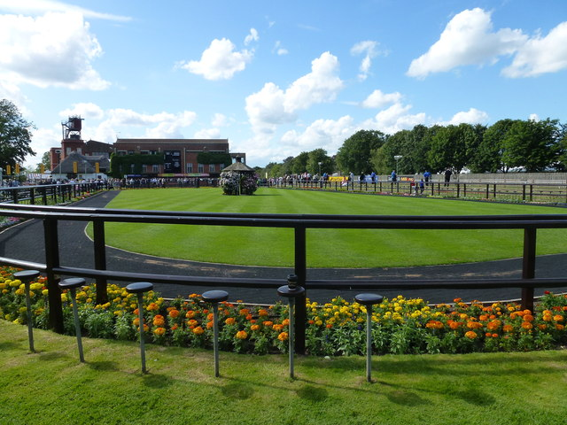 The July Course, Newmarket - Spot the coffee cup