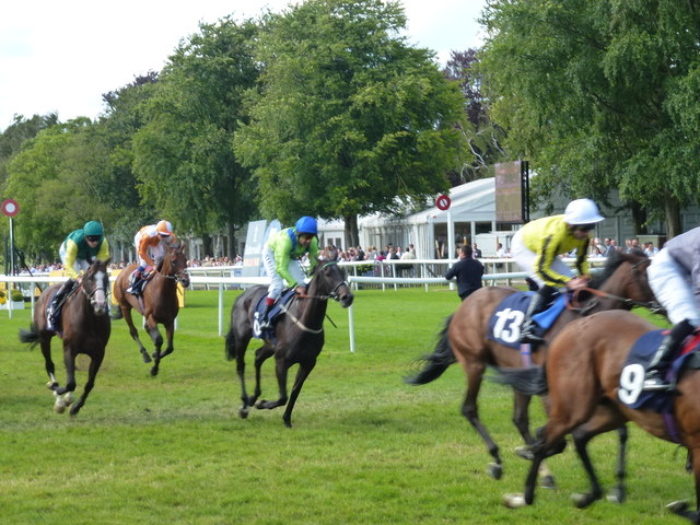 The July Course, Newmarket - Slowing down after the winning post