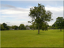 SD6911 : Moss Bank Park, Bolton by David Dixon