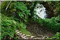 SH6504 : Looking Down to the Dolgoch Falls, Gwynedd by Peter Trimming