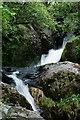 SH6504 : The Dolgoch Falls, Gwynedd by Peter Trimming