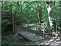 TQ8292 : Footbridge near Northfields Farm by Roger Jones