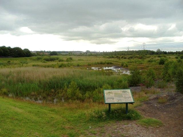 Letchmire Pastures Nature Reserve