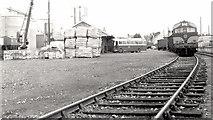 N9690 : Goods train, Ardee (1) by Albert Bridge