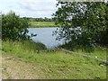 TF2259 : Pond alongside Wharfe Lane  by Alan Murray-Rust