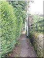 SE2041 : Footpath - Haw Lane by Betty Longbottom