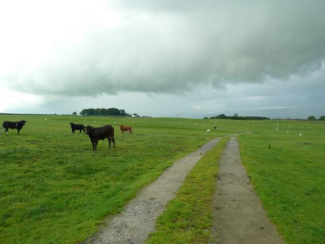 Road to Hile Farm