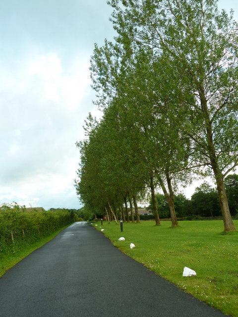 Road to Crowtrees Caravan Park