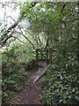 SZ5884 : Footbridge and kissing gate on edge of Blackpan Common by David Smith