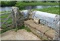 NY7187 : Stell, Falstone by Oliver Dixon