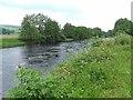 NY7485 : River North Tyne near Ridley Stokoe Farm by Oliver Dixon