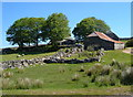 SX6474 : Dunnabridge Pound Farm by Derek Harper