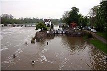 SU5980 : Goring Lock on the swollen River Thames by Steve Daniels