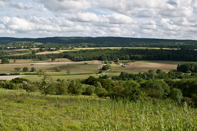 View from White Downs