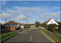 TQ4200 : Roundhay Avenue by Simon Carey