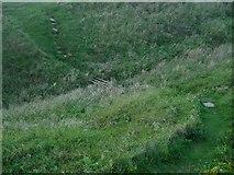 TQ4200 : Chene Gap by Simon Carey