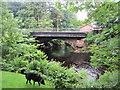 NY0406 : Road bridge over the River Calder at Calder Bridge by Perry Dark
