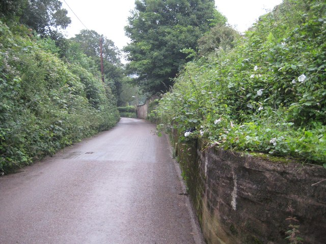 Bakers Hill, Tiverton