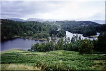 SD3299 : Tarn Hows by Ruth Riddle