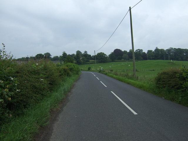 Minor road heading south towards West Fallodon