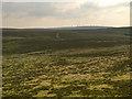 SD6721 : Darwen Moor and Winter Hill by David Dixon