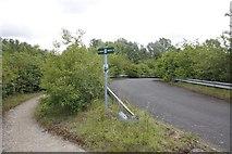 SU5894 : Road to Queensford Farm by Bill Nicholls